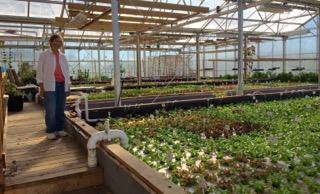 Victus Farm